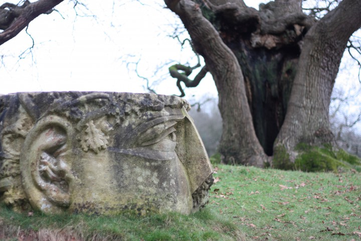 Green Man sculpture and oak tree at Ashton Court, Bristol